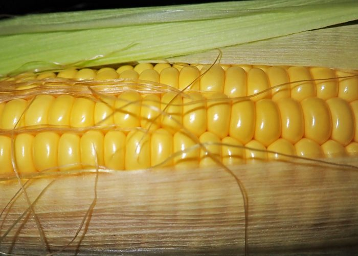 Crispy Sweet Corn
